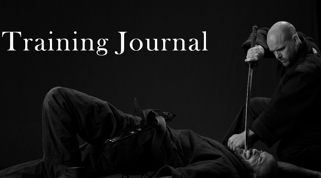 Ninpo US Training Journal – The Power of Emptiness